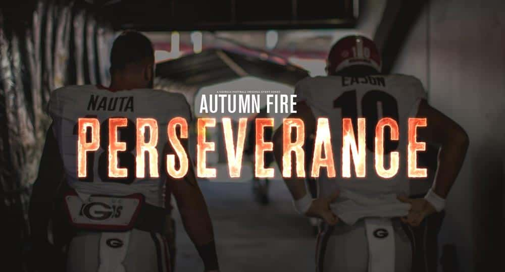 Autumn Fire - Perseverance