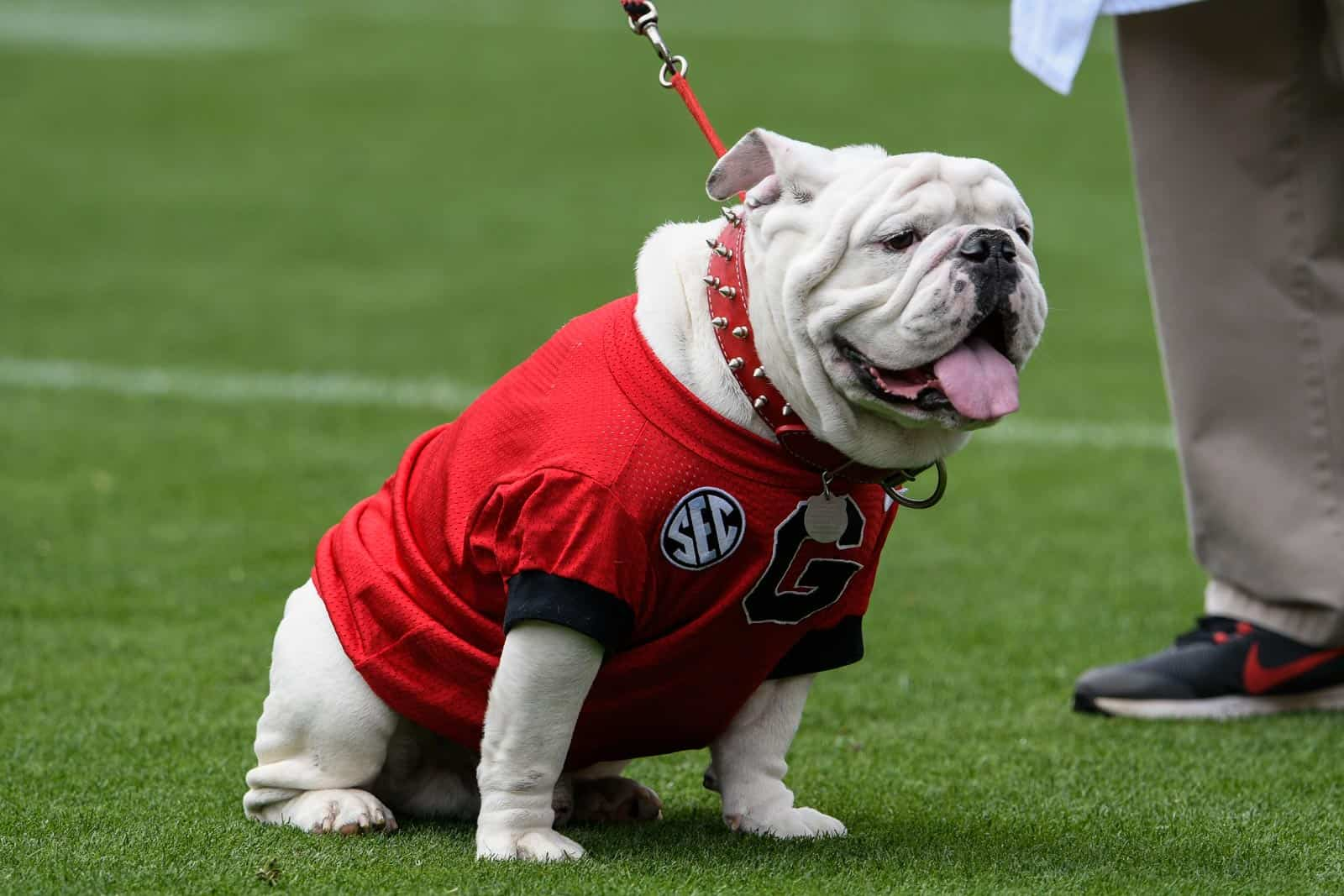 2019 UGA football schedule ranked 13th toughest by Phil Steele